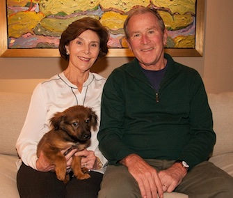 Former President George W. Bush and his wife, Laura, adopted Freddy from a Texas shelter.