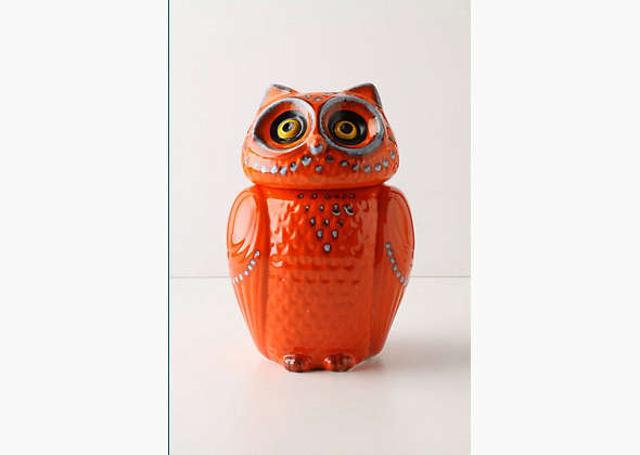 Orange Owl Canister