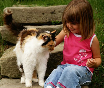 Girl petting cat