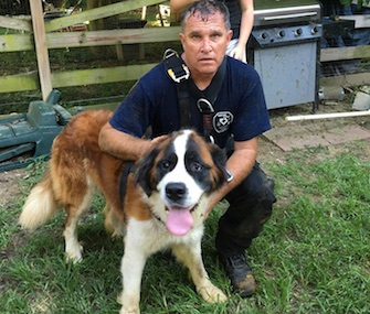 Mabel, a Saint Bernard, was saved from the bottom of a 30-foot dry well outside her Maryland home.