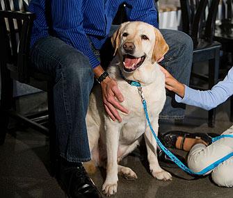 Dog in Vet Waiting Room