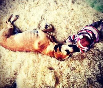 Katherine Heigl's daughter Adalaide and dog