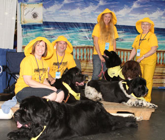 Newfoundland Booth at Meet the Breeds