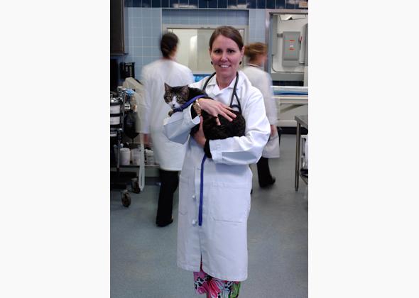Dr. Ann Hohenhaus