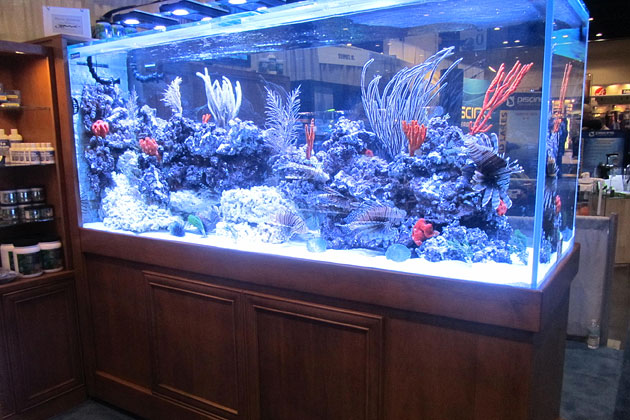 Boyd Enterprises Reef Aquaria Design