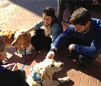 A couple who were injured in Monday's blasts visit with two of the comfort dogs.
