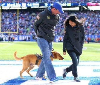 Iraq war veteran Steve Devries was surprised with a service dog, Levi, at a New York Giants game.