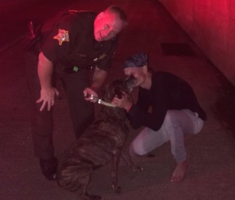 Hero officer Dan Murchek reunited Bella with her owner after saving her from a burning vehicle.
