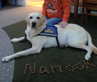 Nanook offers comfort at the Michael's House Child Advocacy Center in Ohio.