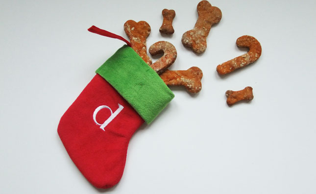 dog treats spilling out of stocking