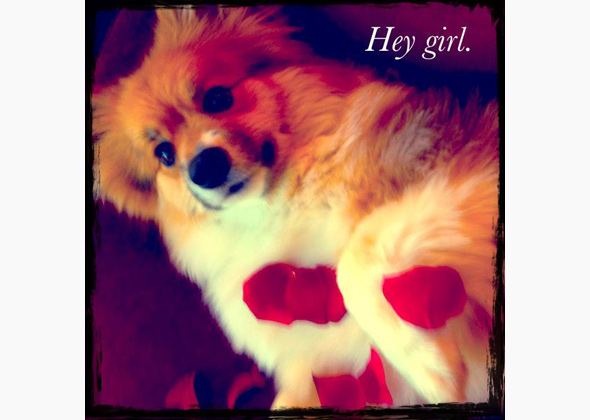 """Hey Girl"" Valentine"