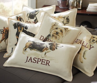 Pottery Barn dog pillow covers