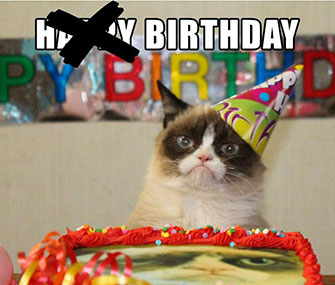 Not even a cake in her honor could make Grumpy Cat crack a smile.
