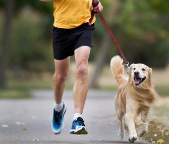 Man and dog jogging