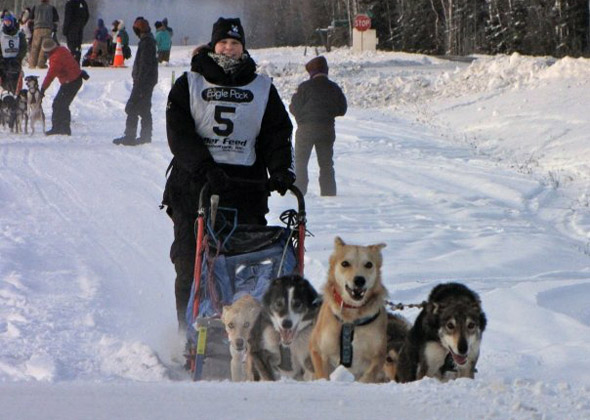 Sled team racing.