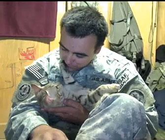 Staff Sgt. Jesse Knotts helped Koshka the cat after the cat helped him.