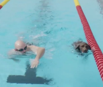 Service dogs at the Invictus Games got their own chance to swim on Thursday.