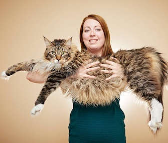 Ludo the Maine Coon has been named the longest cat alive.