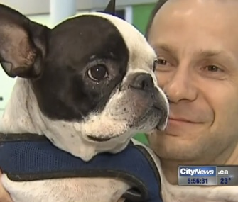 An Air Canada pilot diverted an international flight to save Simba, a French Bulldog.