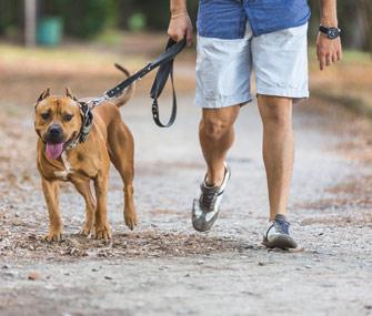 Man walking dog on leash