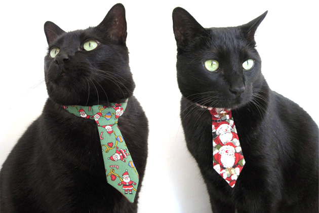 Holiday Neckwear for Cats from Snoop Catty Catt