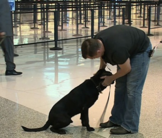 Former Marine Robert Hulsey is reunited with his canine partner Jjoe in Dallas.