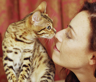 Woman and Cat Eskimo Kiss
