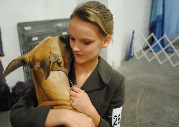 Junior handler Katie Rude and her Great Dane Dior at National Dog Show