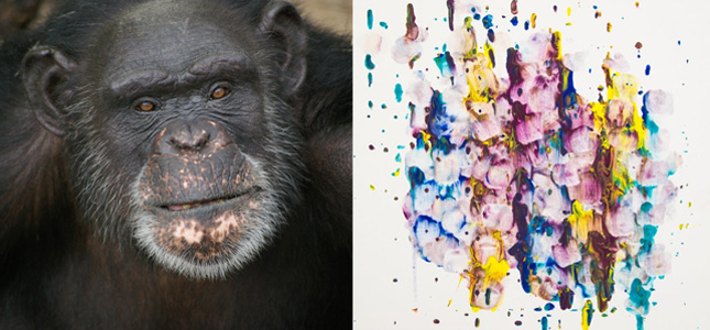 Chimp Painting
