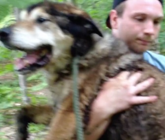 Kevin Ahearn carries 17-year-old Rocky out of the woods in New Hampshire.