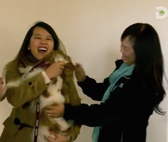 Bentley slobbers his owner, Nina Pham, with kisses after being released from quarantine Saturday.