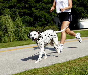 Woman running with Dalmatian