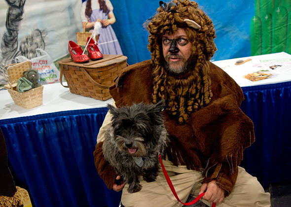 Meet the Breeds Cairn Terrier and Cowardly Lion