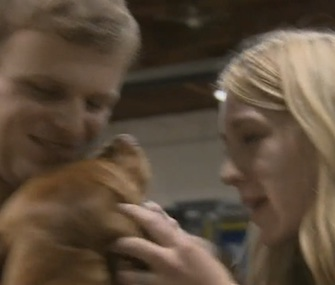 A 7-month-old Vizsla puppy named Penny has been reunited with her owners after being found across the country.