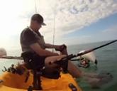 Vizsla Barney rescued by kayaker