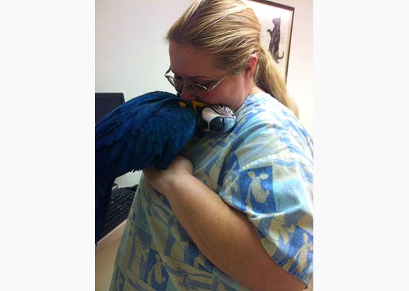 sweet   veterinary technicians showing pets love