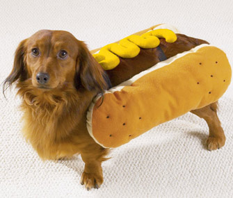 National Hot Dog Month hot dog costume
