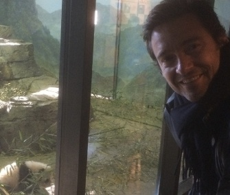 Hugh Jackman visits panda cub Bao Bao at the National Zoo in Washington.