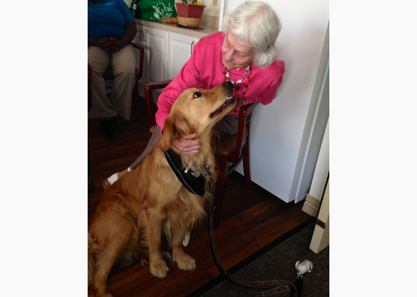 Dylan Pickle is a registered therapy dog.