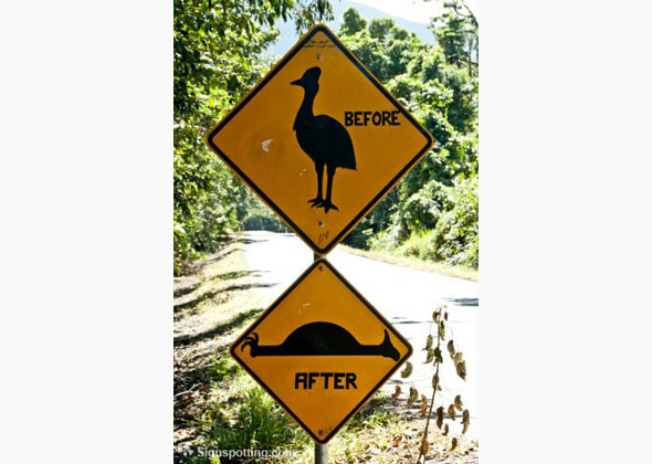 Before and After Crossing Sign