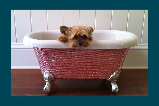 Swarovski Pet Bathtub