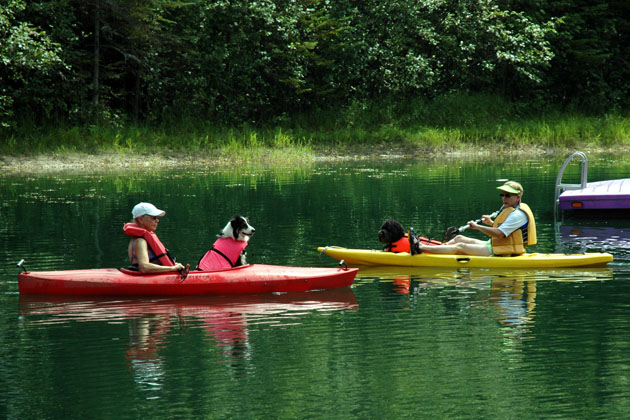 Dog Scouts Kayacking