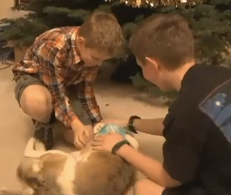 Aaron and Timothy Esau greet Pippin, who returned home this week, a year after she was stolen.