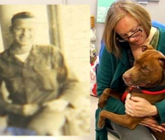Fox Carolina News and the Greenville County Pet Rescue were asking people to share this image of Soldier the dog and the photo found in his collar.