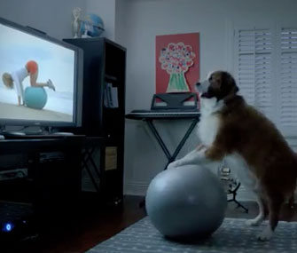 VW ad dog exercising