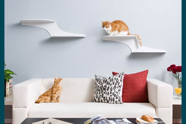 Cat Clouds Shelves