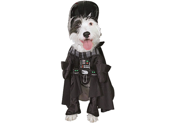 Dog Star Wars Costume