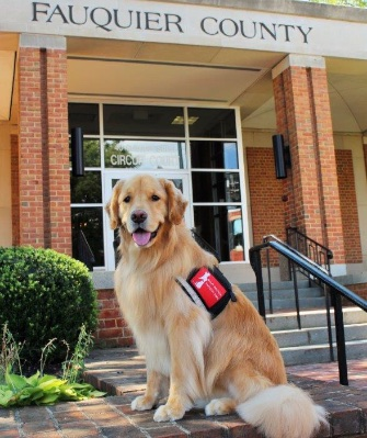 Lincoln has been working with forensic interviewer Lori Jones in Fauquier County, Virginia, for a year.
