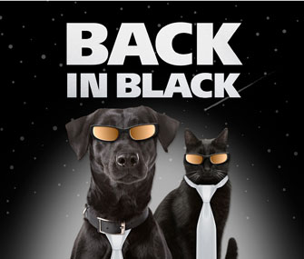 Back in Black Campaign Poster