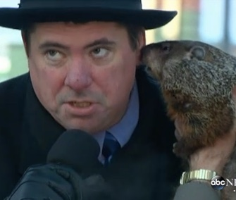 Jimmy the groundhog bit Sun Prairie, Wisconsin, Mayor Jonathan Freund's ear on Groundhog Day.